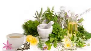 Herbs and Oils banner
