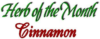 Herb of the month Cinnamon